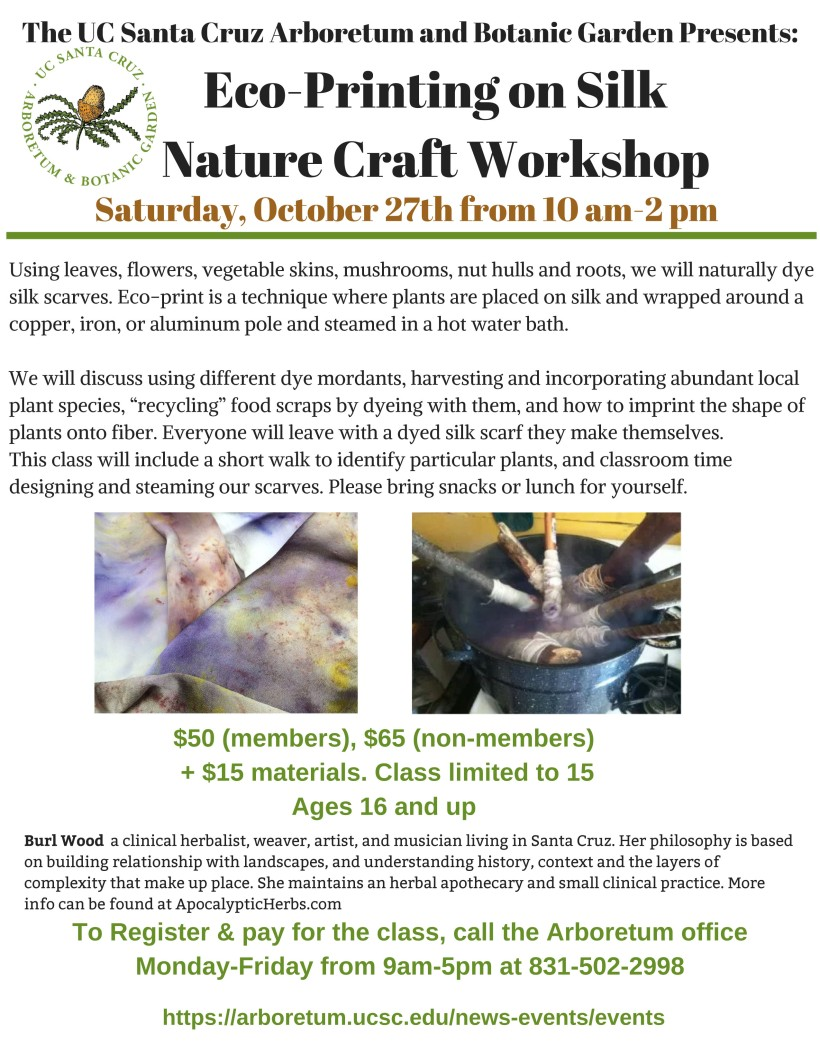 Copy of Dyeing Wool with Invasive Plants Workshop